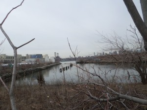 The Bushwick Inlet, which would be the full park centerpiece. Not hard to imagine how awesome this would be.